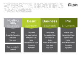 web-hosting-packages